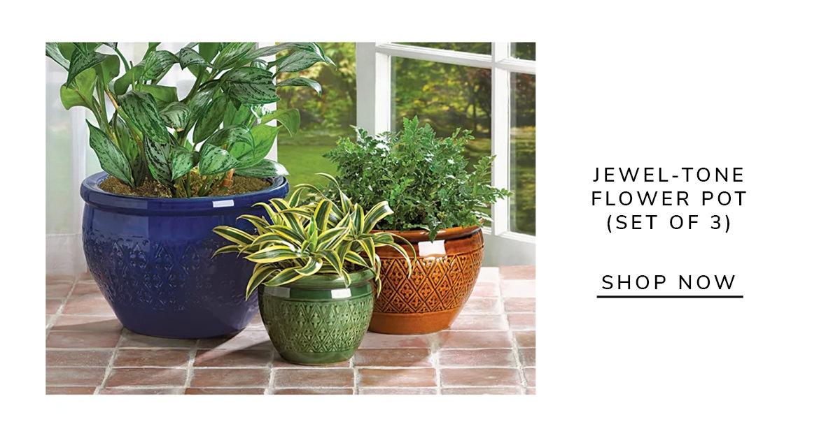 Jewel-Tone Flower Pot (Set of 3) | SHOP NOW