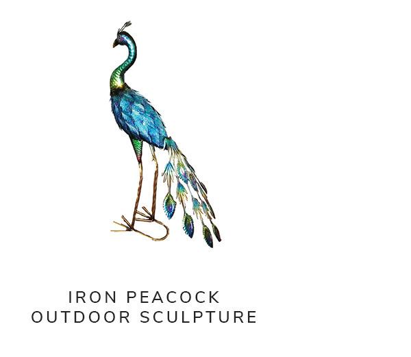 Iron Peacock Outdoor Sculpture | SHOP NOW