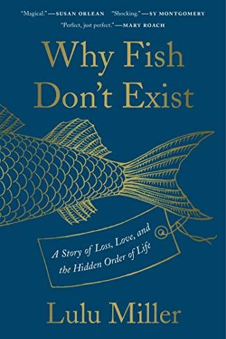 Book Cover - Why Fish Don't Exist by Lulu Miller