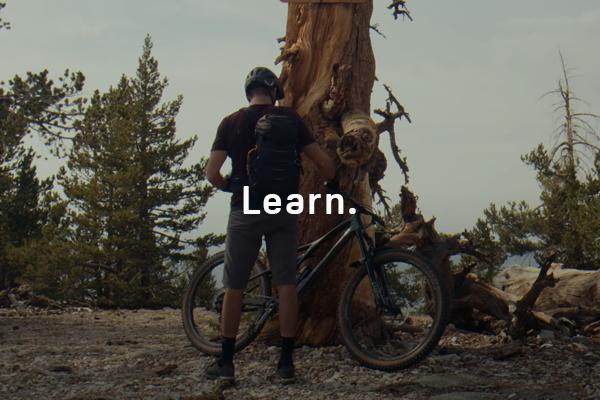 Trail Guide: Jason Fitzgibbon