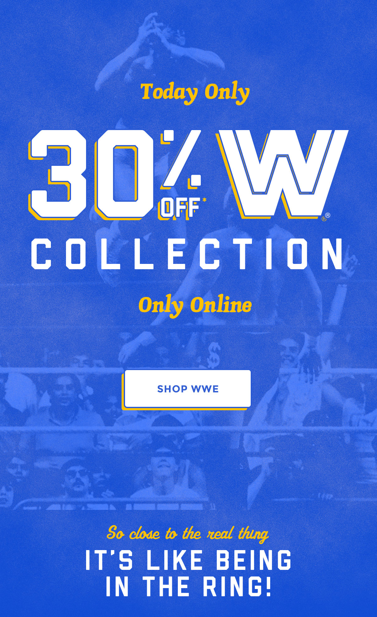 Today Only | 30% off WWE Collection