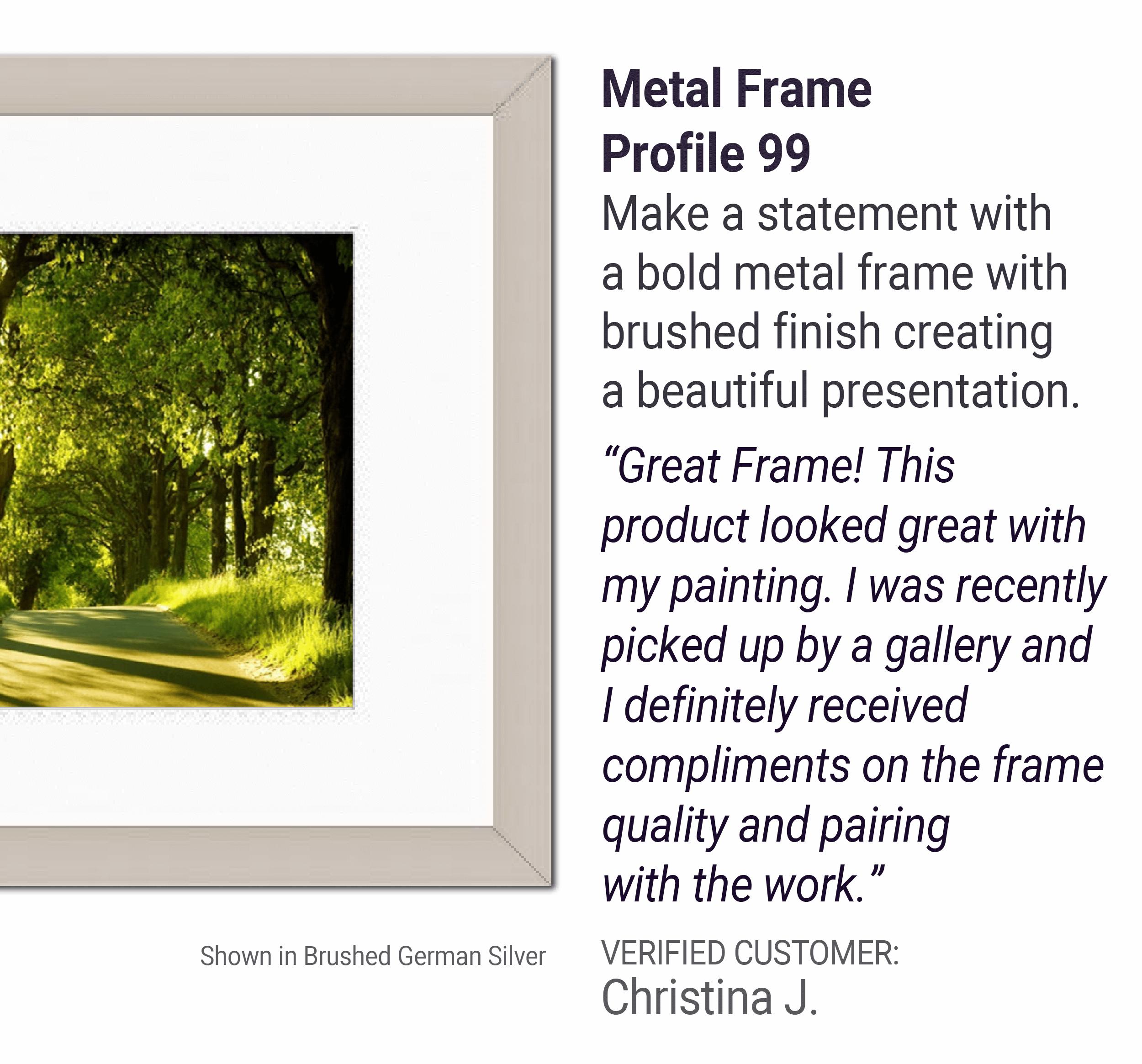 Metal Frame Profile 99