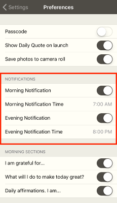 5 minute journal app preferences