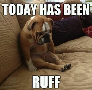 ruff day meme