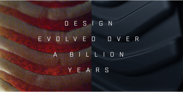 Design evolved over a billion years.