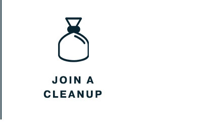 Join a Cleanup