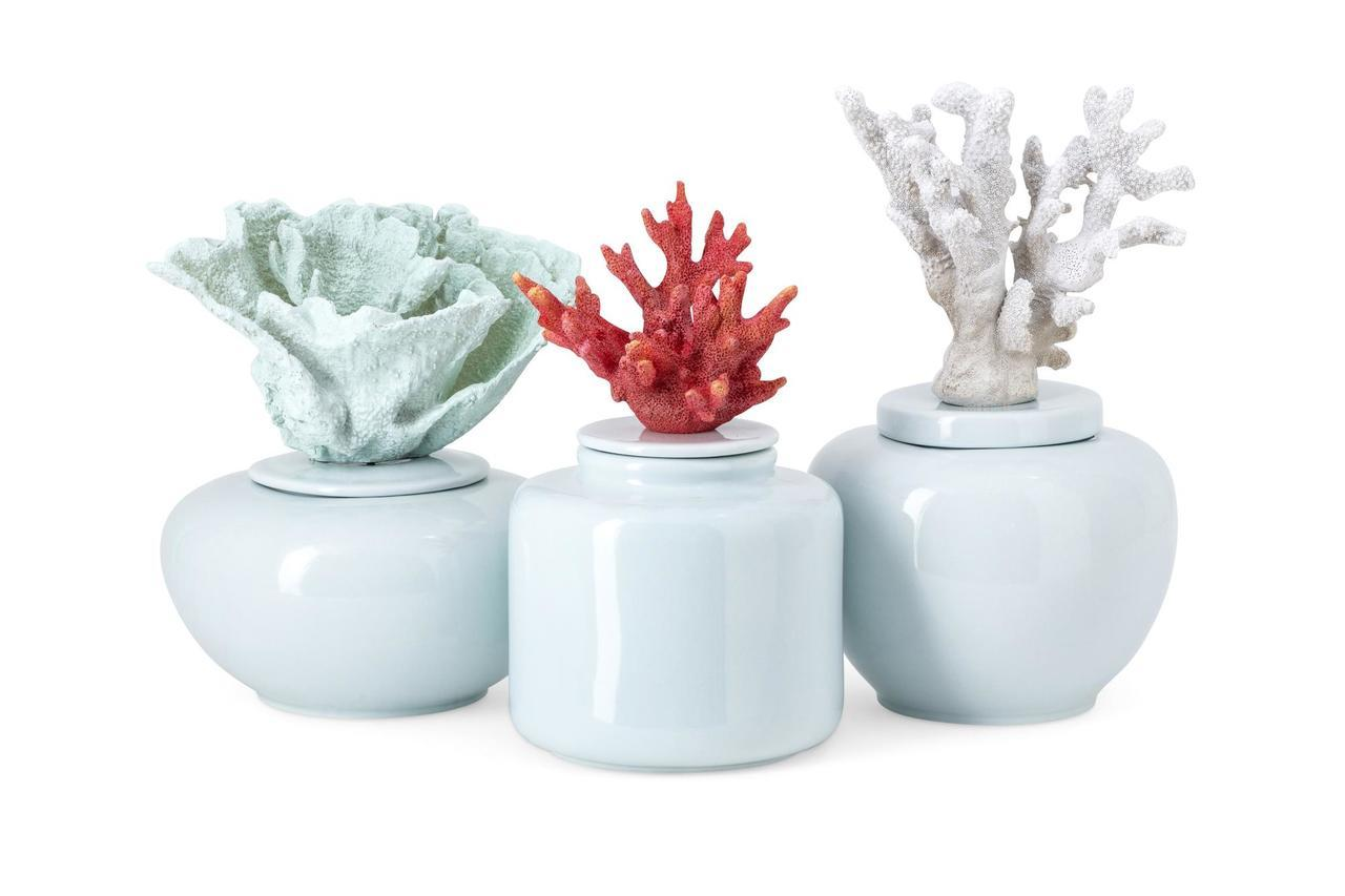 Faux Coral Beauty